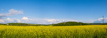 Spring Rapeseed Yellow Blooming Fields View, Blue Sky With Clouds In Sunlight Panorama. Pyatnychany Tower (defense Structure, 15th Century) On Far Hill Slope.