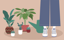 Home Plant Vector Illustration In Flat Design Girl In Blue Jeans Is Standing Near Watering Can And Different Plants In Flower Pots On Beige Background