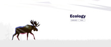 An Elk With Horns Comes Out Of The Forest In The Fog. Environmental Banner