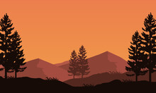 Great View Of The Mountains At Dusk With The Silhouette Of The Surrounding Pine Trees. Vector Illustration