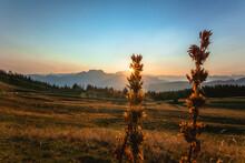 Crépuscule D'été Au Semnoz, Lac D'Annecy, Haute Savoie