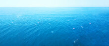 Wide Panoramic Frame Of Ocean And Marine Life. Transparent Sea, Seascape. Group Of Beautiful Jellyfish. Ripples On The Surface Of Bright Blue Water. Boundless Open Ocean Space, Depth, Horizon Line