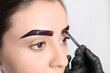 canvas print picture Beautician applying tint during eyebrows correction procedure on light background, closeup