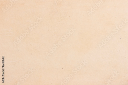 Obraz A sheet of old, stained, yellowed paper. Neutral light texture. - fototapety do salonu