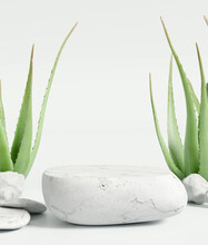 White Stone Product Display Podium Stand With Aloe Vera On White Background. 3D Rendering