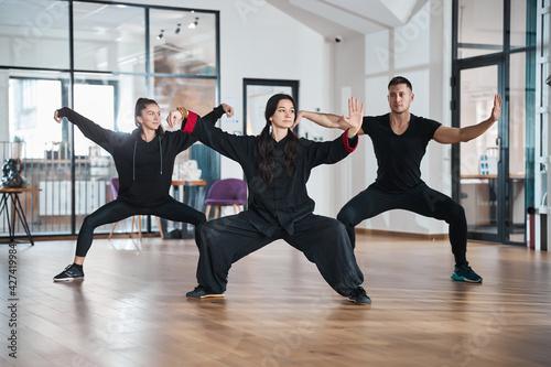Fototapeta Tai chi students with teacher training single whip form