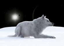 Illustration Of A Wolf Resting On Snow On An Alien World With Eclipsing Planet And Moons With A Distant Star In The Background.