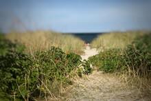Narrow Sandy Passage To Beachside