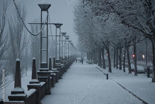 lleida nieve nevada blanco arboles farola