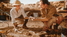 Archaeological Digging Site: Two Great Paleontologists Pass Bone Of A Newly Discovered Of Dinosaur To Each Other. Archeologists On Excavation Site Discover Fossil Remains Of Skeleton. Close-up Shot