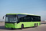 Fototapeta Londyn - autobus miejski pojazd transport publiczny