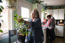 Senior Woman Taking Care Of Houseplant At Home