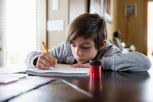 Portrait Of Boy Doing Homework At Table