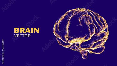 Obraz na płótnie Digital brain wireframe