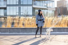 Stylish Young Woman Walking Dog On Leash On Sunny Urban Winter Path