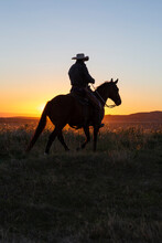 Silhouette Of Cowboy And Horse At Sunset
