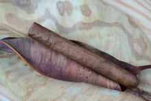 Toma En Primer Plano De Un Cigarro Puro Cuyo Aspecto Destaca Del Color Y De La Textura Bien Diferenciados De Las Hojas Secas Sobre Las Que Descansa.