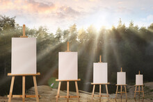 Wooden Easels With Blank Canvases In Forest On Sunny Day