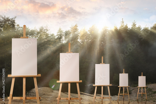 Wooden easels with blank canvases in forest on sunny day - fototapety na wymiar