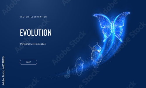 Fototapeta Evolution of a butterfly in a digital futuristic style. Insect life cycle, transformation from caterpillar to butterfly. The concept of a successful startup or investment or business transformation obraz