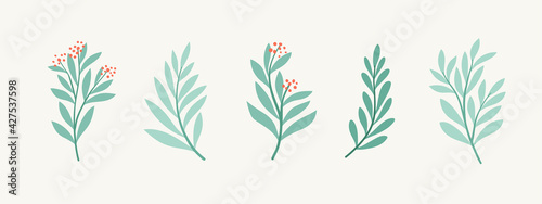 Stampa su Tela Set of vector floral elements