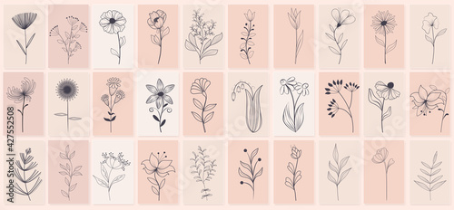 Canvas Print Set of beautiful hand drawn of floral with leaves and branches, floral sketch collection