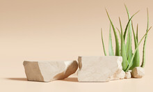 Stone Product Display Podium Stand With Aloe Vera On Brown Background. 3D Rendering
