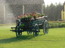 Beautiful Shot Of A Decorative Garden Cart With Colorful Flowers