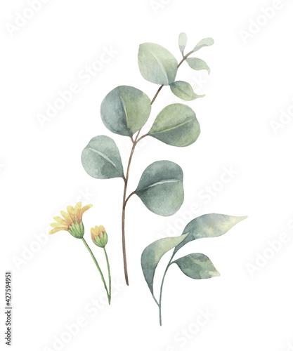 Fotografija Watercolor vector arrangement of green branches and leaves.