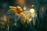 Kwiat Tulipan żółty botaniczny Tarda. Yellow flower