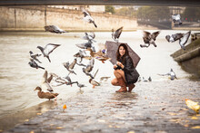 A Woman With An Umbrella Feeds Birds On The Embankment Of The River