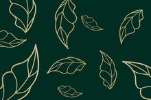 Wallpaper Line Leaf Gold Design  On Green Background, Concept Metro Diamond Geometric, Pattern, Abstract, Graphic, Bohemian , Nature, Garden, Luxury