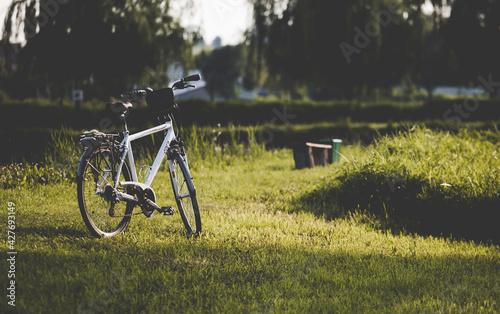 Biały rower stojący na zielonej trawie - fototapety na wymiar