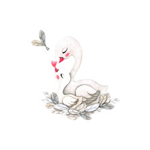 Composition Of Swans And Feathers. Cute White Swans: Mom And Baby Sit In A Nest Of Feathers. Watercolor Illustration Isolated On White Background.