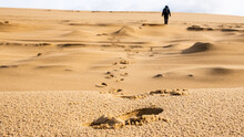 Rear View Of Person Walking On Sand In Desert