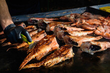 Raw Rose Fish Also Known As Ocean Perch, Atlantic Golden Redfish, Bream Or Hemdurgan, Grilled