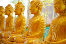 Line Of Golden Statues Of Buddah In The Phra Phutta Ming Mongkol Akenakiri In Thailand In Phuket.