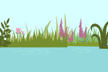 Pond Background Vector