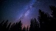 Leinwandbild Motiv starry night sky