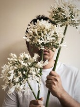 Midsection Of Man Holding 3 Stalks Of White, Agapanthus Flowers.