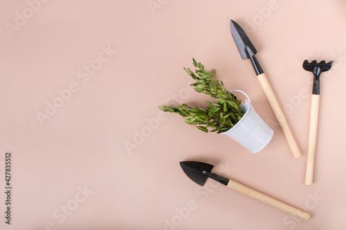 Fotografie, Obraz mini shovel, rake and bucket