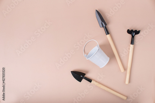 Fototapeta mini shovel, rake and bucket