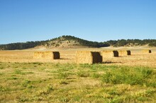 Large Square Hay Bales Tied Tight