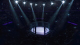 Cage fight arena. Fans view of fighting arena with fans and shining spotlights. Digital sport 3D illustration.