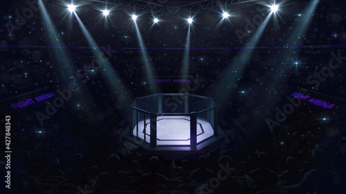 Fototapeta Cage fight arena. Fans view of fighting arena with fans and shining spotlights. Digital sport 3D illustration. obraz