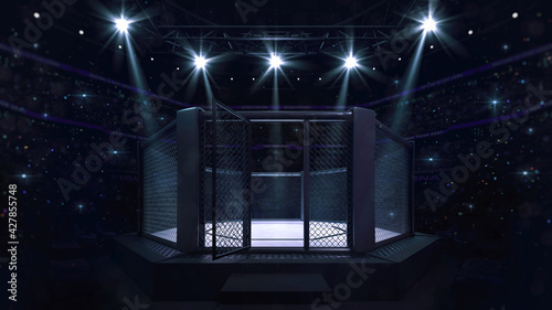 Fototapeta Cage fight arena with entry doorway. Interior view of fighting arena with fans and shining spotlights. Digital sport 3D illustration. obraz