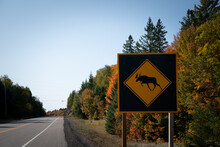 Closeup Of A Moose Crossing Sign Along The Road With Beautiful Landscape