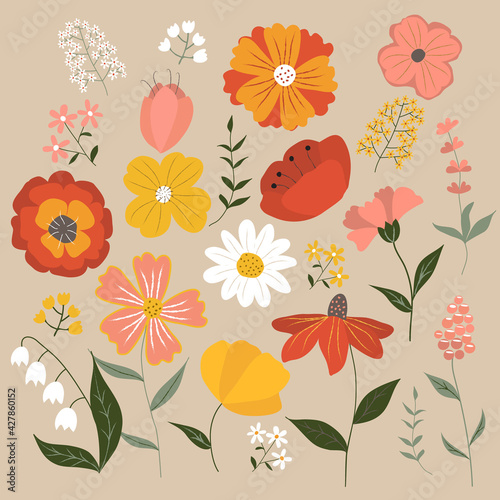 Fototapeta Set of summer flowers and herbs. Red, yellow, pink and white buds on beige background. Vector illustration in flat style obraz