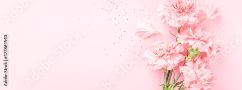Slika na platnu Pink carnations on pink background