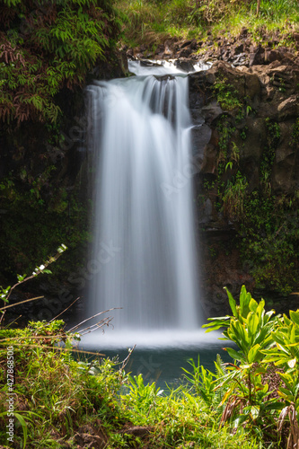 Canvas Print Scenic View Of Puaa Kaa Waterfall In Forest, Maui, Hawaii